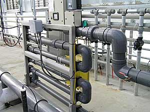 Copper ionization water treatment system